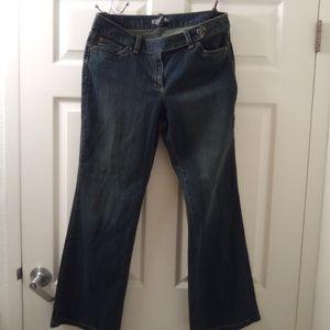 Ann Taylor Petite Curvy Fit Jeans
